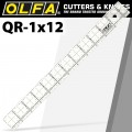 QUILT RULER 1' X 12' WITH GRID